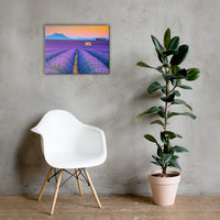 Blooming Lavender Field and Sunset Canvas Wall Art Prints 18×24 - PIPAFINEART