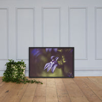 Dramatic Blue Lobelia, Blue Cardinal Flower - Abstract Merlot Effect Floral Nature Photo Framed Wall Art Print Black / 24×36 - PIPAFINEART