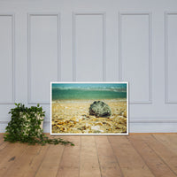 Daydreams on the Shore Coastal Nature Photo Framed Wall Art Print White / 24×36 - PIPAFINEART