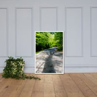 Summer Shadows Botanical Nature Photo Framed Wall Art Print White / 24×36 - PIPAFINEART