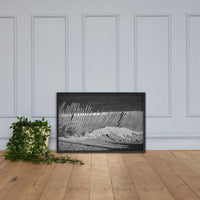 Sandy Beach Fence at the Shore Landscape Framed Photo Paper Wall Art Prints Black / 24×36 - PIPAFINEART