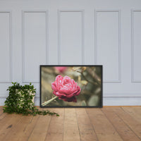 Perfect Petals Colorized Floral Nature Photo Framed Wall Art Print Black / 24×36 - PIPAFINEART