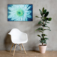 Brilliant Flower Floral Nature Canvas Wall Art Prints 24×36 - PIPAFINEART