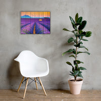 Faux Wood Lavender Fields and Sunset Rural Landscape Canvas Wall Art Prints 18×24 - PIPAFINEART