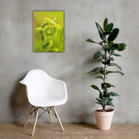 Nature's Perfection Botanical Nature Canvas Wall Art Prints 18×24 - PIPAFINEART