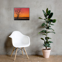 Burning Skies Rural Landscape Canvas Wall Art Prints 16×20 - PIPAFINEART