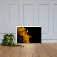 Sunflower in Corner Floral Nature Photo Framed Wall Art Print White / 24×36 - PIPAFINEART