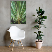 Aged and Colorized Wide Palm Leaves 2 Botanical Nature Canvas Wall Art Prints 24×36 - PIPAFINEART