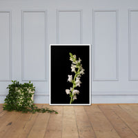 White Snapdragons Floral Nature Photo Framed Wall Art Print White / 24×36 - PIPAFINEART