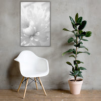 Infrared Flower Black and White Floral Nature Canvas Wall Art Prints 24×36 - PIPAFINEART