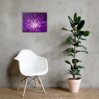 Abstract Flower Floral Nature Canvas Wall Art Prints 16×20 - PIPAFINEART