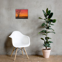 Burning Skies Rural Landscape Canvas Wall Art Prints 12×16 - PIPAFINEART