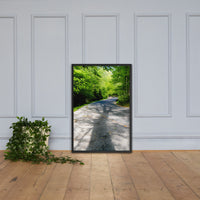Summer Shadows Botanical Nature Photo Framed Wall Art Print Black / 24×36 - PIPAFINEART