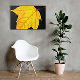 Brilliant Yellow Botanical Nature Canvas Wall Art Prints 24×36 - PIPAFINEART