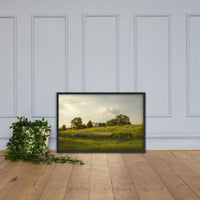 Remnant of Better Days Landscape Framed Photo Paper Wall Art Prints Black / 24×36 - PIPAFINEART