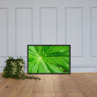 Peaceful Greenery Botanical Nature Photo Framed Wall Art Print Black / 24×36 - PIPAFINEART