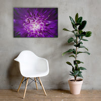 Abstract Flower Floral Nature Canvas Wall Art Prints 24×36 - PIPAFINEART