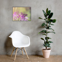 Spider Flower in Glory Light With Spotted Moth Floral Nature Canvas Wall Art Prints 18×24 - PIPAFINEART