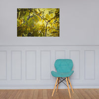 Aged Golden Leaves Botanical Nature Photo Loose Unframed Wall Art Prints 24×36 - PIPAFINEART