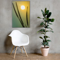 Silhouettes in Sunset Botanical Nature Canvas Wall Art Prints 24×36 - PIPAFINEART