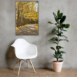 Fall Path Autumn Nature Photo Canvas Wall Art Prints - Rural / Farmhouse / Country Style Landscape Scene 24×36