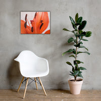 Lily Stigma Floral Nature Canvas Wall Art Prints 18×24 - PIPAFINEART