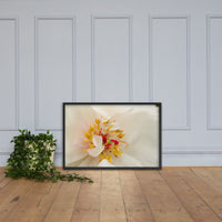 Eye of Peony Floral Nature Photo Framed Wall Art Print Black / 24×36 - PIPAFINEART