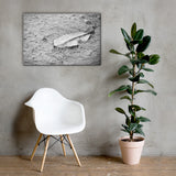 Fallen Leaf in The Rain Black and White Floral Nature Canvas Wall Art Prints 24×36 - PIPAFINEART