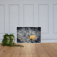 Black Sands and Seashell on the Shore Coastal Nature Photo Framed Wall Art Print White / 24×36 - PIPAFINEART