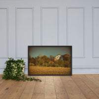 Abandoned Barn In The Trees Colorized Framed Photo Paper Wall Art Prints Black / 24×36