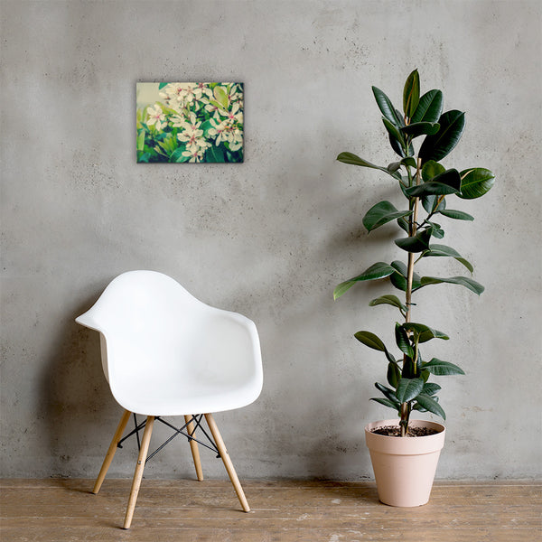 Indian Hawthorn Shrub in Bloom Colorized Floral Nature Canvas Wall Art Prints 12×16 - PIPAFINEART