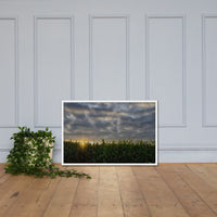 Rows of Corn Rural Landscape Framed Photo Paper Wall Art Prints White / 24×36 - PIPAFINEART