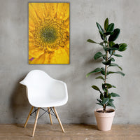 Joyful Color Floral Nature Canvas Wall Art Prints 24×36 - PIPAFINEART
