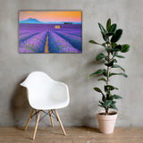 Blooming Lavender Field and Sunset Rural / Farmhouse / Country Style Landscape Scene Photo Canvas Wall Art Prints 24×36