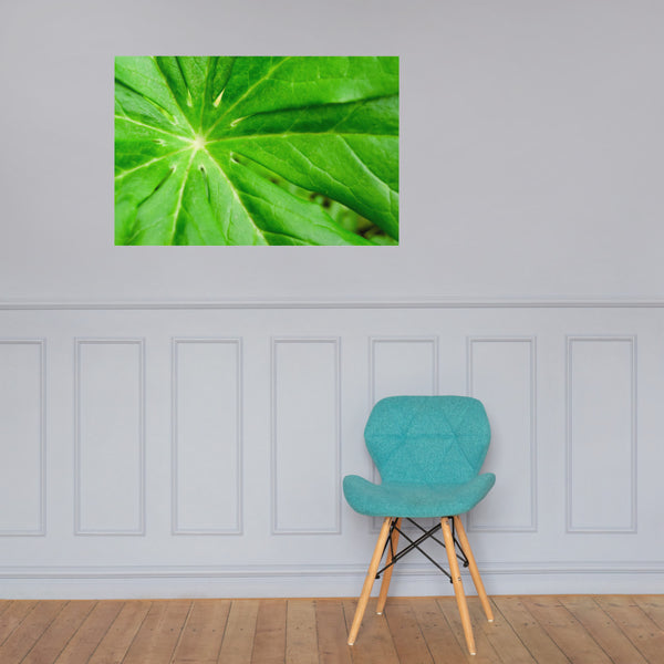 Peaceful Greenery Botanical Nature Photo Loose Unframed Wall Art Prints 24×36 - PIPAFINEART