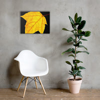 Brilliant Yellow Botanical Nature Canvas Wall Art Prints 18×24 - PIPAFINEART