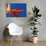 Fall Colors Botanical Nature Canvas Wall Art Prints 24×36 - PIPAFINEART