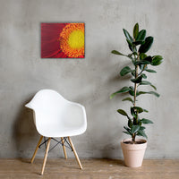 Nature's Beauty Nature Canvas Wall Art Prints 16×20 - PIPAFINEART