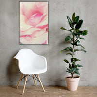 Softened Rose Floral Nature Canvas Wall Art Prints 24×36 - PIPAFINEART