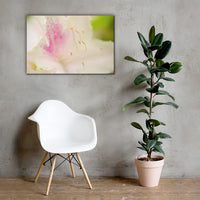 Japanese Azalea Flower Floral Nature Canvas Wall Art Prints 24×36 - PIPAFINEART