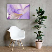 Soft Focus Iris Petals Floral Nature Canvas Wall Art Prints 24×36 - PIPAFINEART