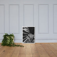 Bloodflowers and Palm Black and White Framed Wall Art Print White / 18×24 - PIPAFINEART