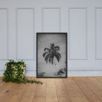 Palm Over Water Black and White Botanical Nature Photo Framed Wall Art Print Black / 24×36 - PIPAFINEART