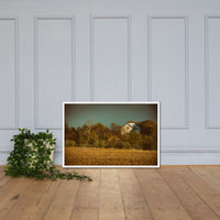 Abandoned Barn In The Trees Colorized Framed Photo Paper Wall Art Prints White / 24×36