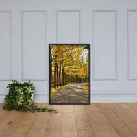 Fall Path Nature Landscape Framed Photo Paper Wall Art Prints - Rural / Farmhouse / Country Style Landscape Scene Black / 24×36