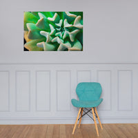 Succulent Botanical Nature Photo Loose Unframed Wall Art Prints 24×36 - PIPAFINEART