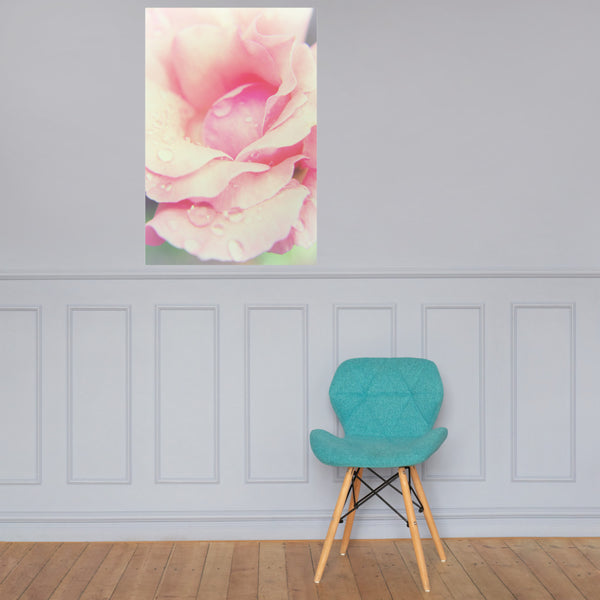 Softened Rose Floral Nature Photo Loose Unframed Wall Art Prints 24×36 - PIPAFINEART