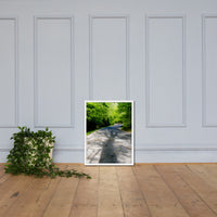 Summer Shadows Botanical Nature Photo Framed Wall Art Print White / 18×24 - PIPAFINEART