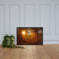 Autumn Sunset in the Trees Rural Landscape Framed Photo Paper Wall Art Prints Black / 24×36 - PIPAFINEART