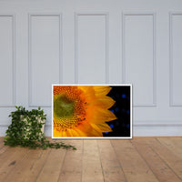 Close-up Sunflower Floral Nature Photo Framed Wall Art Print White / 24×36 - PIPAFINEART